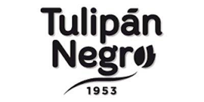 tulipannegro.jpg